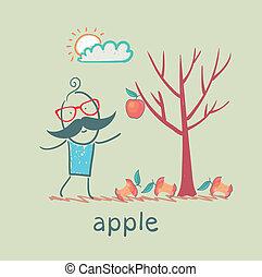 一, 樹, 蘋果, 人, 站立