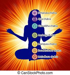 七, 婦女, 蓮花, eps, 位置, 8, chakras.