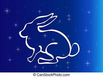 不滿星星的, 夜晚, 黑色半面畫像, 兔子, sky.