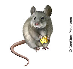 乳酪, 老鼠, 部分, 吃, 房子