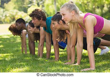 人們, 公園, 推, 組, 向上, 健身