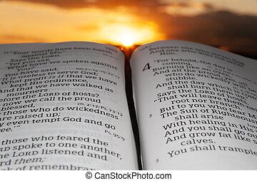 傍晚, 突出, 云霧, 2., 背景, 神圣, malachi, 聖經, 打開, 太陽, 章, 4, 節, 光線