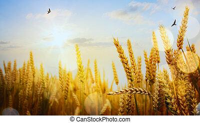 傍晚, 藝術, 耳朵, 黃色, 背景, 領域, 小麥, 成熟
