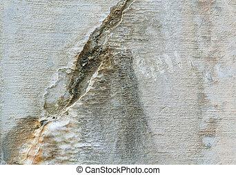 充分, 風化, 牆框架, 水泥, 被爆裂, 礦物