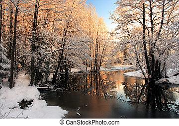 光, 河, 冬天, 日出