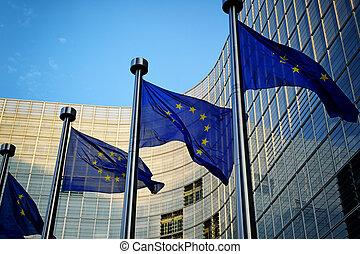 前面, 委任, 良好, 旗, 歐洲