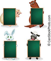 前面, 黑板, 動物