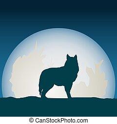 前面, moon., 狼