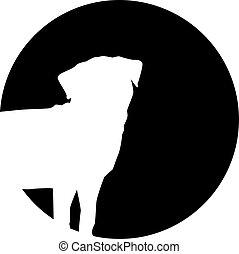 前面, pug, 黑色半面畫像, 月亮
