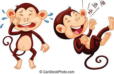 哭泣, 猴子, 笑