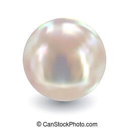 單個, 矢量, pearl.