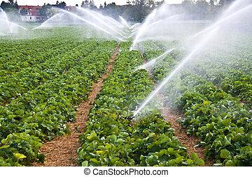 噴水, 農業