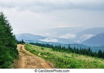 國家道路, 山