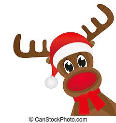 圍巾, 鹿, 聖誕節, 紅色, wavin