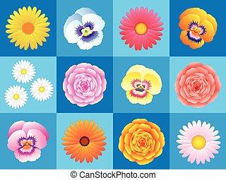 圖案, 花, 背景