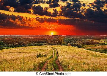 夏天, 自然, 樹, 天空領域, 風景, 鄉村, 綠色, 日出, 路徑, 傍晚, 草, 路