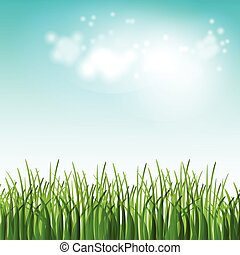 夏天, 花, 插圖, 領域, 矢量, 綠色的草