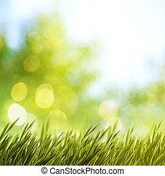 夏天, 設計, 自然, 你, 背景
