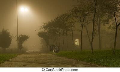 夜晚, 房子, whether, 有霧, 小