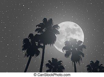 夜晚, 背景, 天空, 好