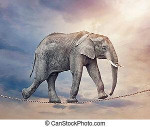 大象, 拉緊的繩索
