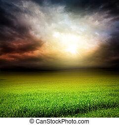 天空, 草太陽, 綠燈, 黑暗, 領域