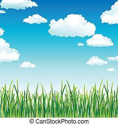 天空, 草, 云霧, 綠色, 上面