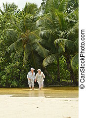 夫婦, 海灘, 跑, 年長