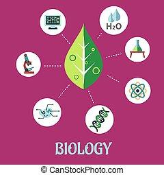 套間, 生物學, 概念, 設計
