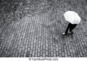 婦女, 傘, 雨