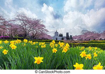 季節, 州州議會大廈, 俄勒岡州, 春天