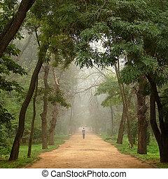 孤獨, 去, 樹, 去, 路, 人