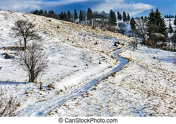 山, 冬天, 多雪, 農村, 路, 風景