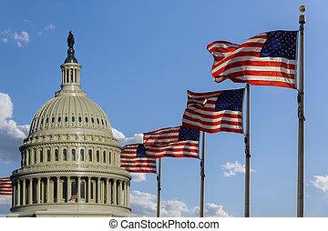 建築物, 國家, 華盛頓, 州議會大廈, 旗, dc, 團結