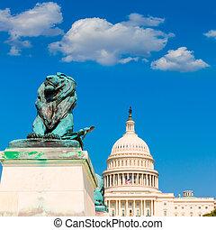 建築物, 州議會大廈, 國會, 華盛頓特區, 陽光