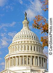 建築物, 州議會大廈, 鮮艷, 樹, 圓屋頂, 我們, 秋天, foliage.