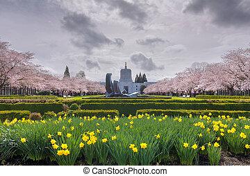 建築物, 春天, 俄勒岡州, 花, 州議會大廈, 狀態