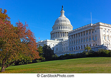 建築物, 秋天, dc, 團結, 州議會大廈, 華盛頓, 國家, 顏色, usa.