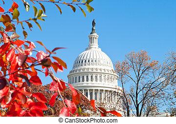 建築物, 美國, 華盛頓特區, 秋天, 首都, 離開, 紅色