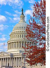 建設顏色, 秋天, 州議會大廈, 我們
