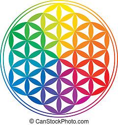 彩虹, 生活, 花, 顏色