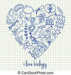 心形狀, 生物學, 圖