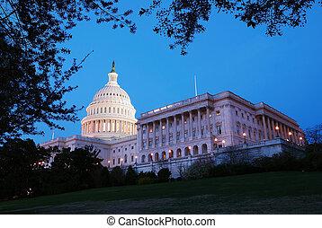 我們, 建築物, 小山, 華盛頓特區, 州議會大廈, 全景