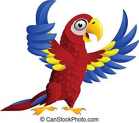 拇指, 金剛鸚鵡, 向上, 鳥