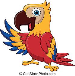 招手, 金剛鸚鵡, 鳥, 卡通
