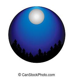 插圖, 矢量, 白色, 夜晚, 背景。, 圖片, 天空