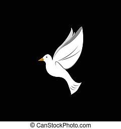 插圖, 矢量, 鴿, 飛行, 晴朗, 美麗, 白色