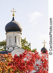 教堂, 莫斯科, anne, 概念, 聖徒, 圓屋頂