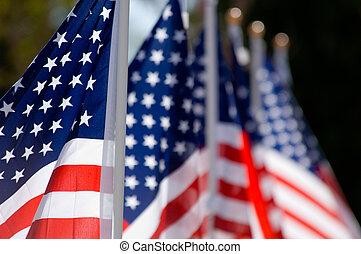 旗, 天, 美國人, 榮譽, 退伍軍人, 顯示
