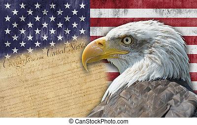 旗, 鷹, 美國人, 禿頭